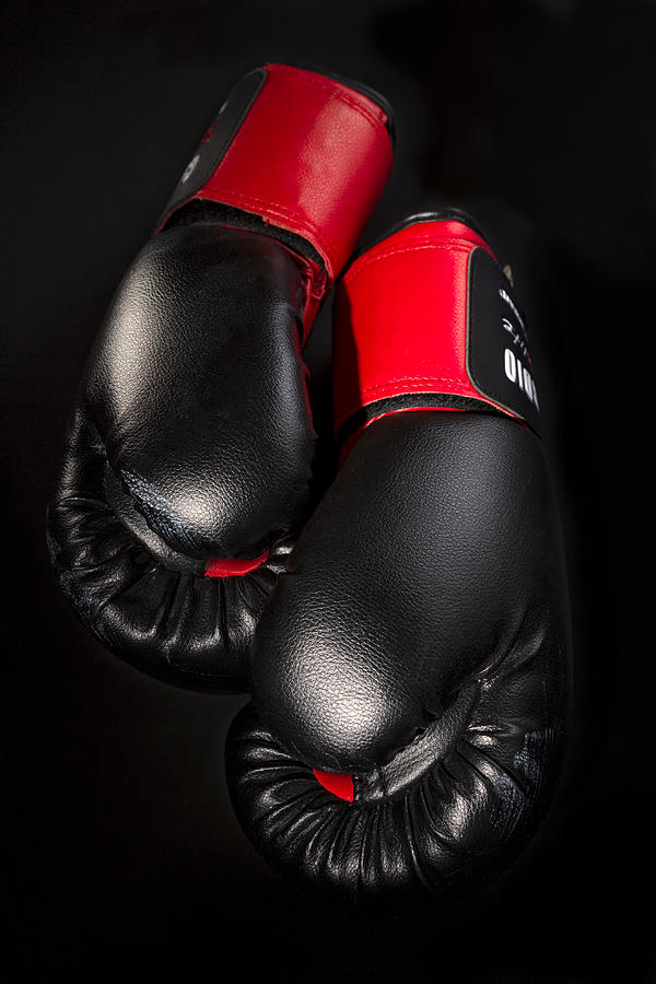 A Fighting Chance Photograph  - A Fighting Chance Fine Art Print