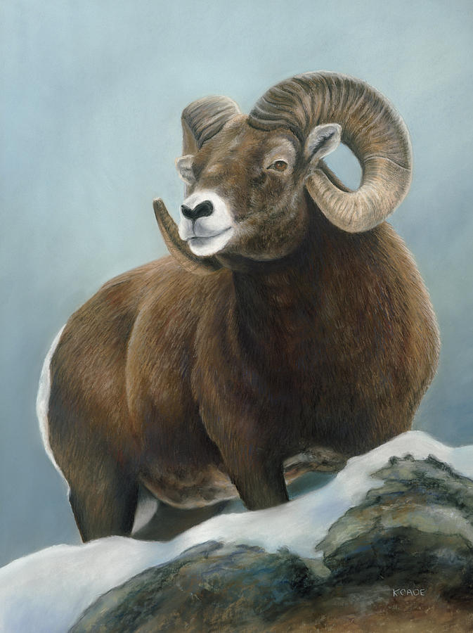 Big Horn Sheep Pastel - A Glimpse From The Edge by Karen Cade
