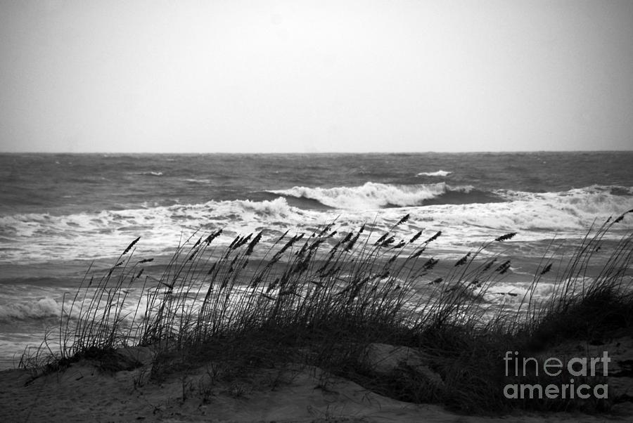 A Gray November Day At The Beach Photograph