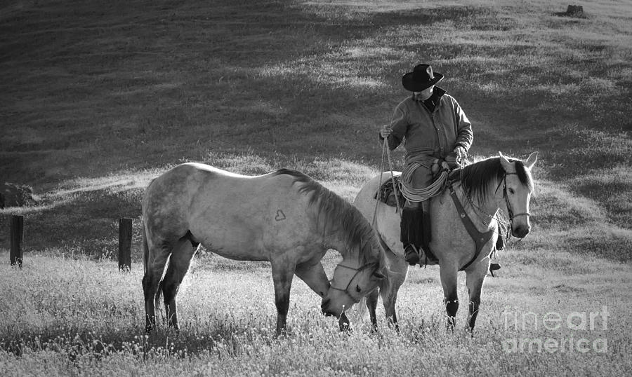 Black & White Photograph - A Kind Moment by Sandra Bronstein