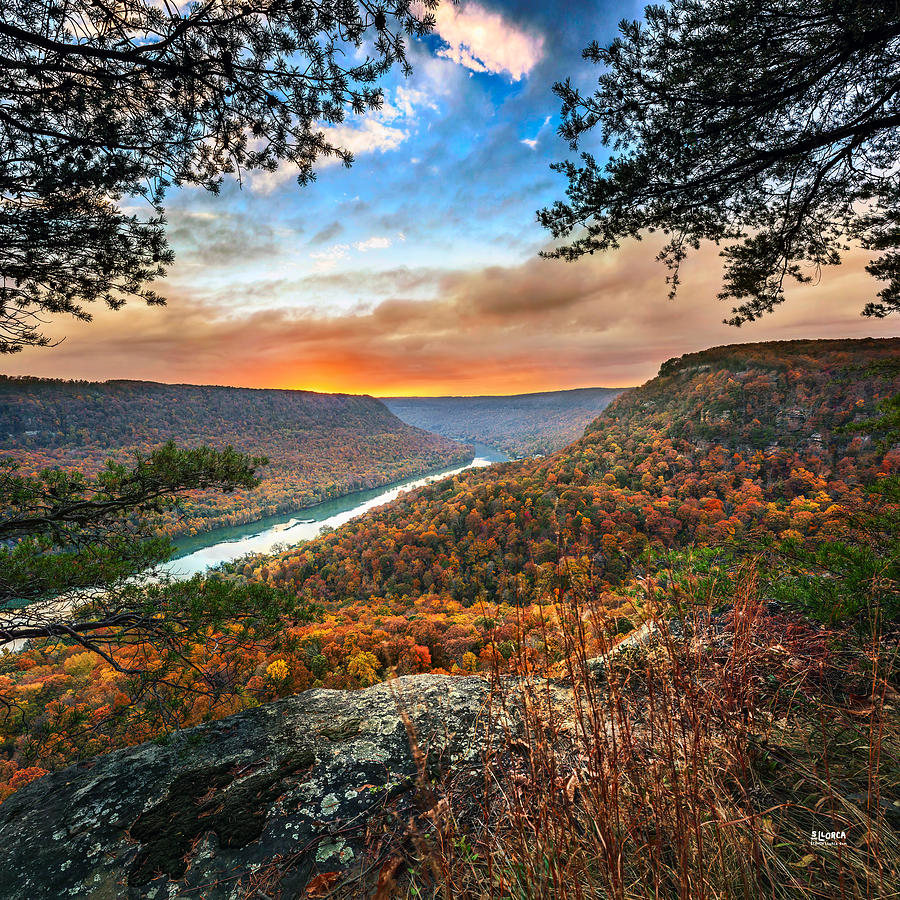 Chattanooga Photograph - A Late Autumn View by Steven Llorca