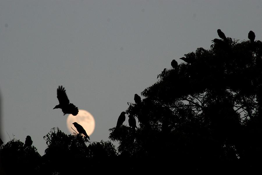 rakesh sharma moon landing images - photo #30
