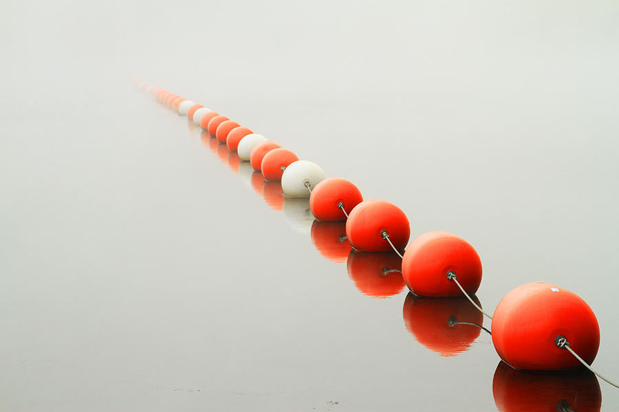 Lake Photograph - A Line To The Unknown by Karol Livote