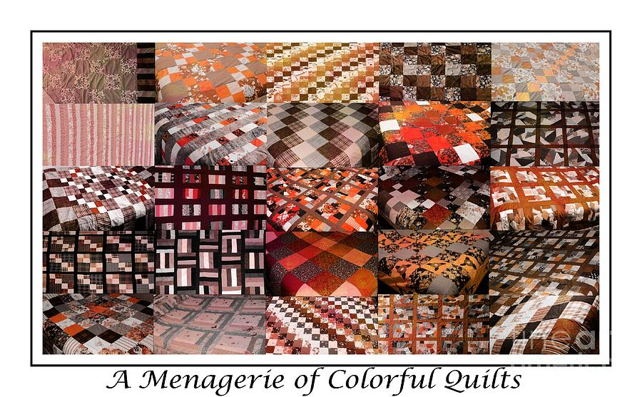 A Menagerie Of Colorful Quilts -  Autumn Colors - Quilter Tapestry - Textile  - A Menagerie Of Colorful Quilts -  Autumn Colors - Quilter Fine Art Print