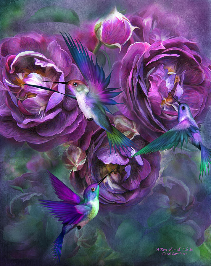 Rose Named Violette is a mixed media by Carol Cavalaris which was ...