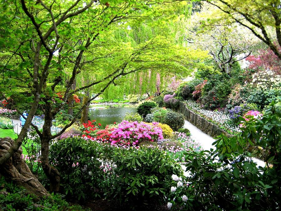 Scenery Photograph - A Spiritual Place by Shirley Sirois