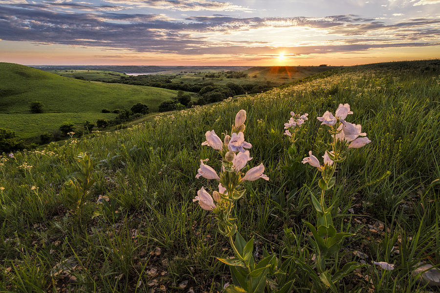A Spring Sunset In The Flint Hills Photograph