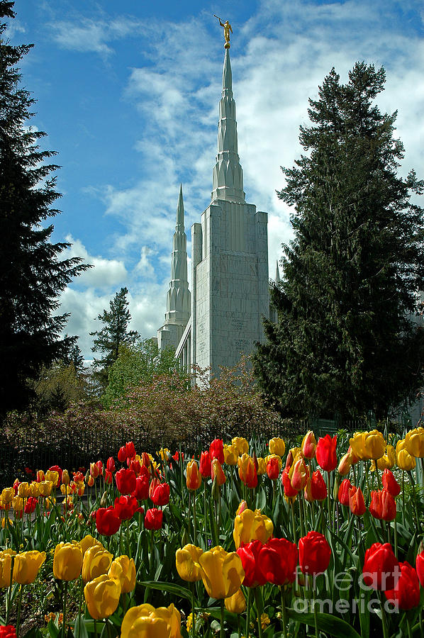 Lds Photograph - A Temple To Our God by Nick  Boren
