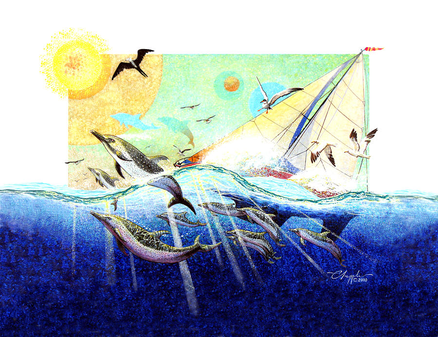 A Tern With The Dolphins Painting