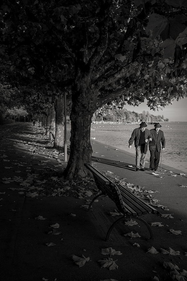 People Photograph - A Walk In The Park by Antonio Jorge Nunes