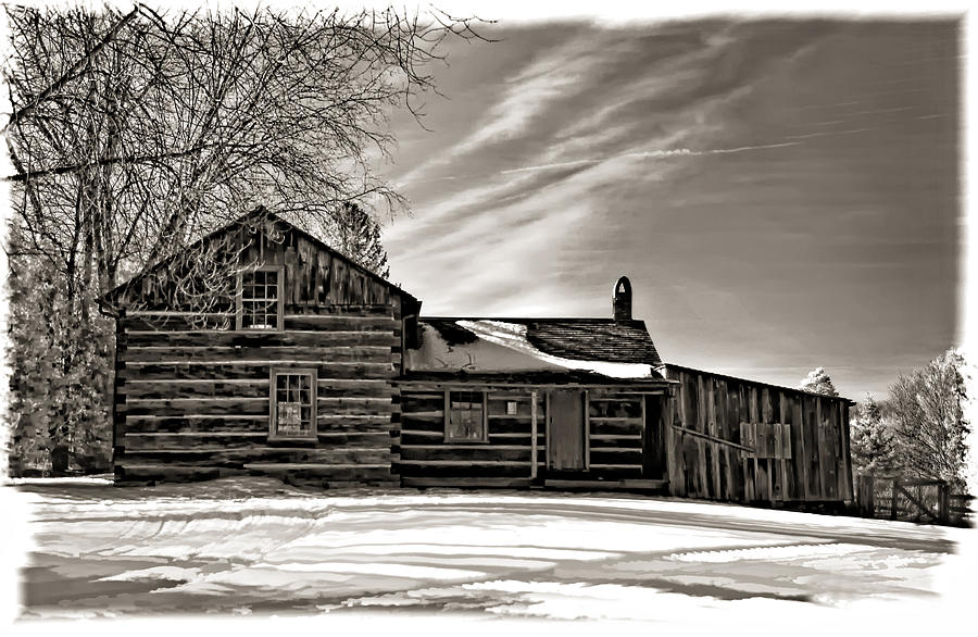 A Winter Dream Monchrome Photograph  - A Winter Dream Monchrome Fine Art Print