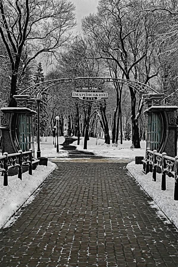 A Winter Dreamscape Photograph
