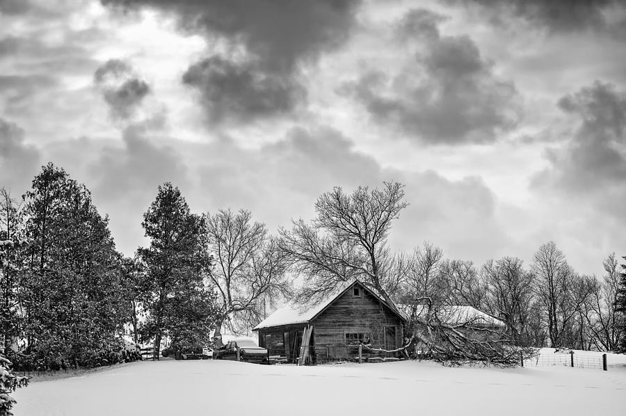 A Winter Sky Monochrome Photograph