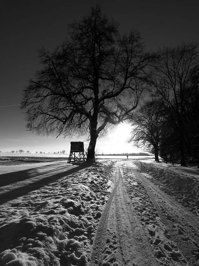 A Winter Sunset Photograph