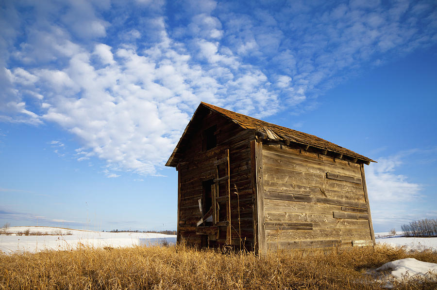 A Wooden Shed Stands Alone Photograph