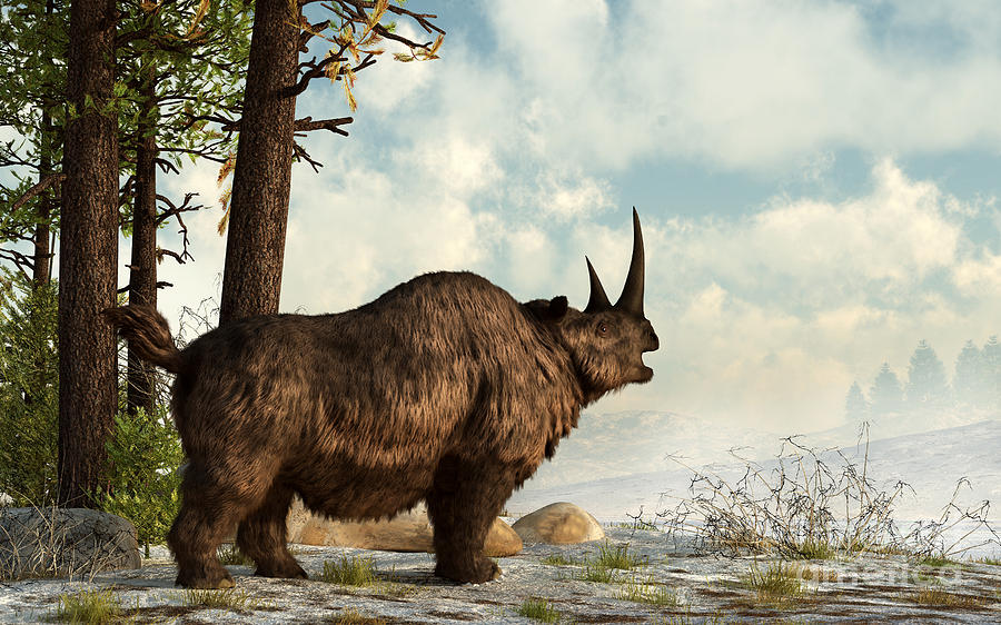 A Woolly Rhinoceros Trudges Digital Art  - A Woolly Rhinoceros Trudges Fine Art Print