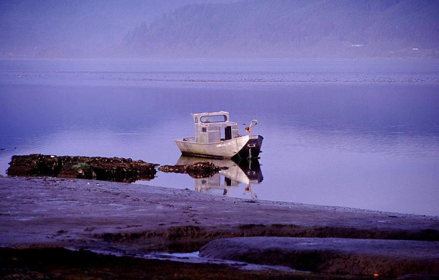 Abandoned Boat Photograph