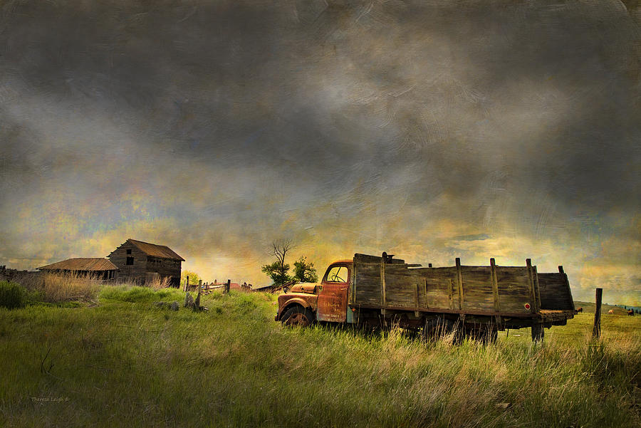 Abandoned Farm Truck Photograph  - Abandoned Farm Truck Fine Art Print