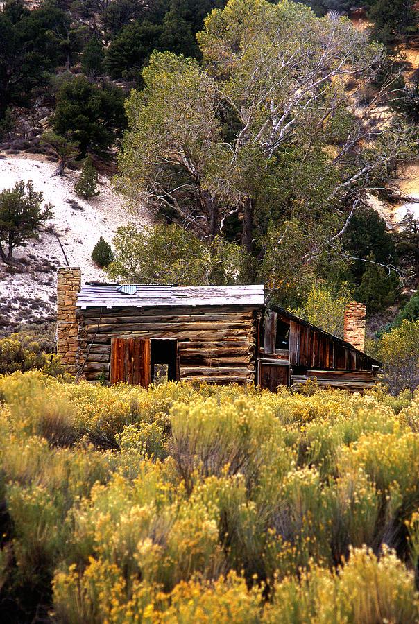 Abandoned_cabin Photograph - Abandoned Homestead by Martin Sullivan