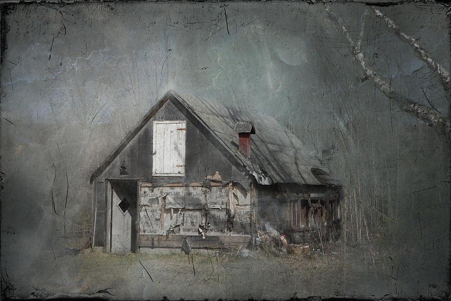 Abandoned Shack On Sugar Island Michigan Photograph