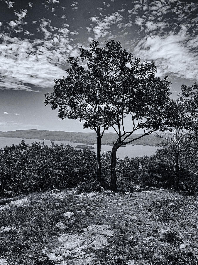 Above Lake George Black And White Photograph  - Above Lake George Black And White Fine Art Print