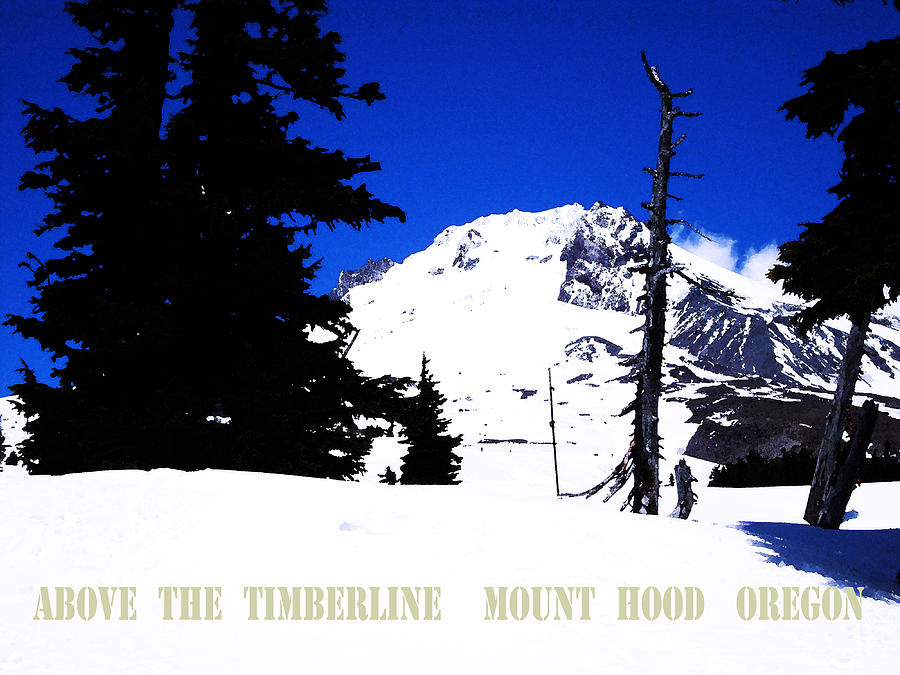 Above The Timberline  Mt Hood  Oregon Digital Art  - Above The Timberline  Mt Hood  Oregon Fine Art Print