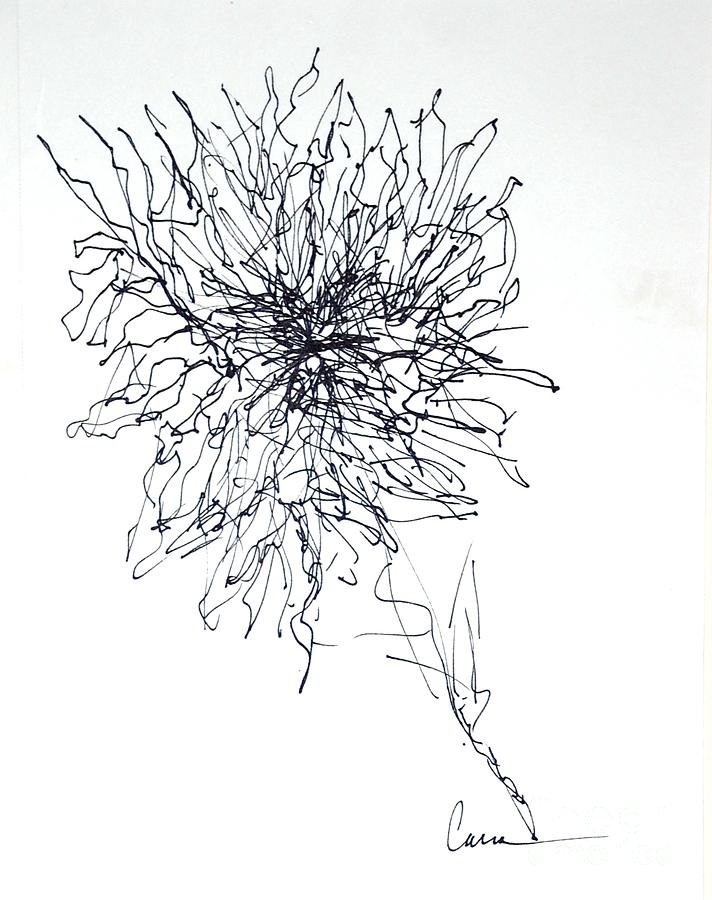 Abstract Line Drawing Flowers : Abstract flower line drawing by lisa carroccio