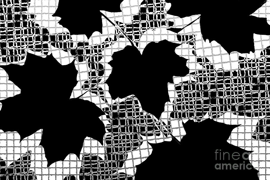 Abstract Photograph - Abstract Leaf Pattern - Black White Grey by Natalie Kinnear