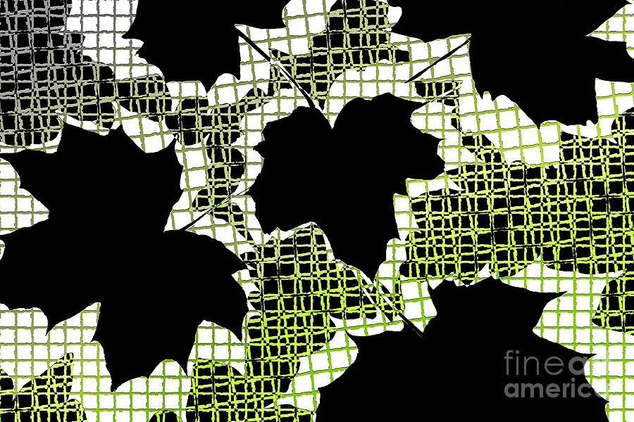 Abstract Leaf Pattern - Black White Lime Green Photograph