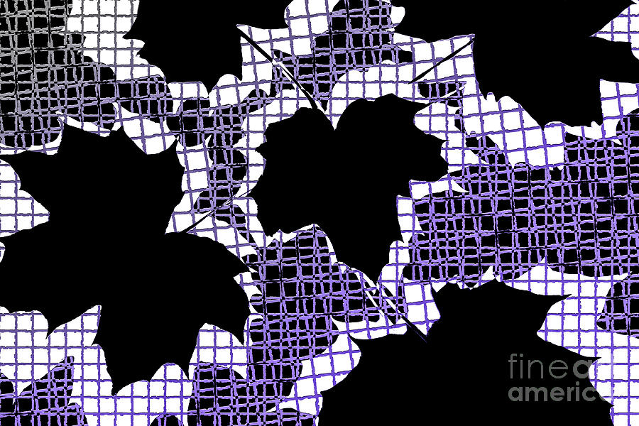 Abstract Leaf Pattern - Black White Purple Photograph