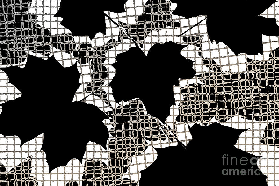 Abstract Leaf Pattern - Black White Sepia Photograph