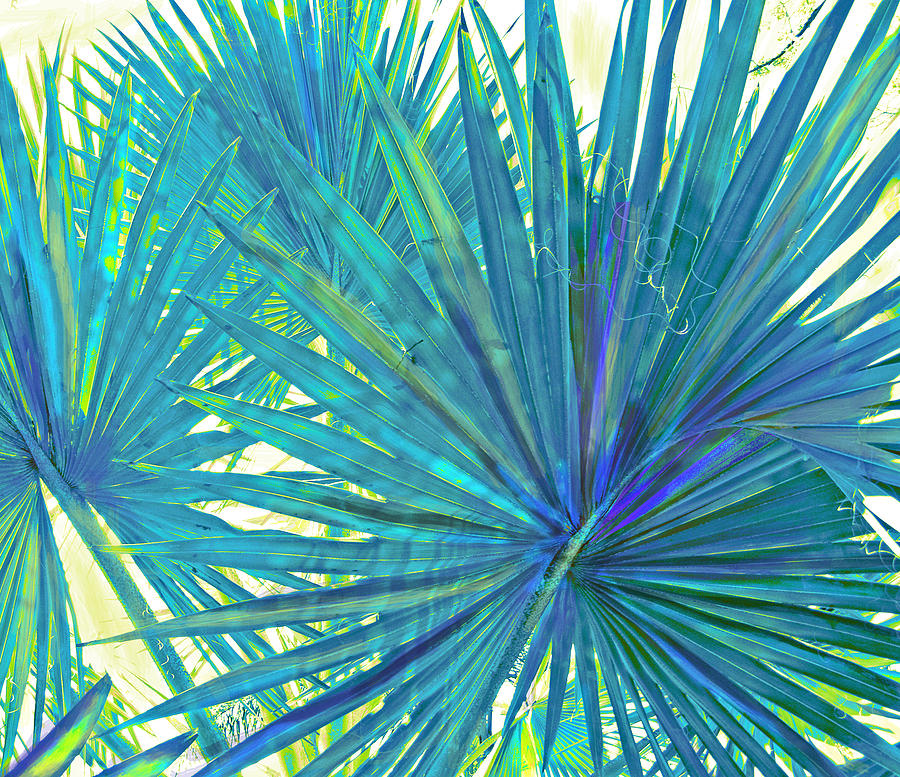 Abstract Palm 2 Digital Art  - Abstract Palm 2 Fine Art Print