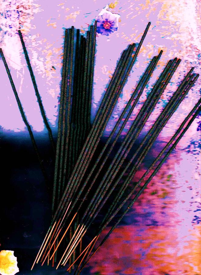 Sticks Mixed Media - Abstract With Sticks by Anne-Elizabeth Whiteway