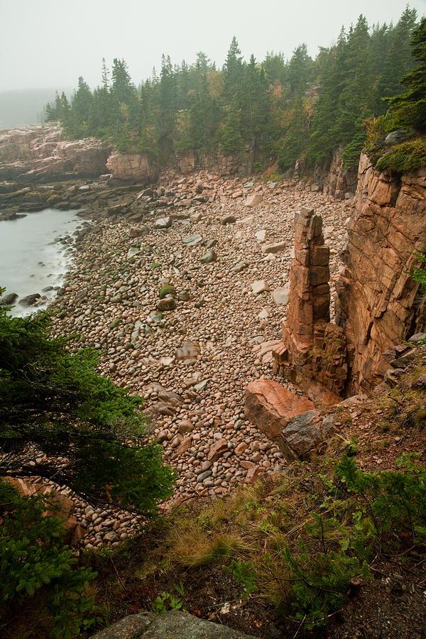 Acadia Fog At Monument Cove 4337 Photograph