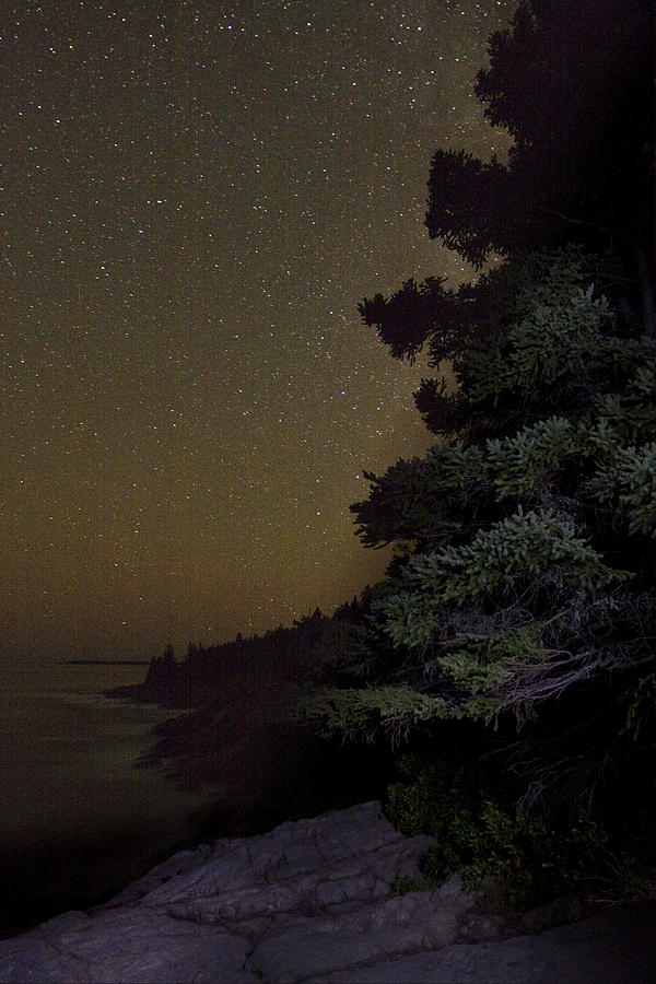 Night Photograph - Acadia Stars 01 by Brent L Ander