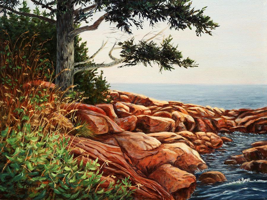 Seascape Painting - Acadia Tree by Elaine Farmer