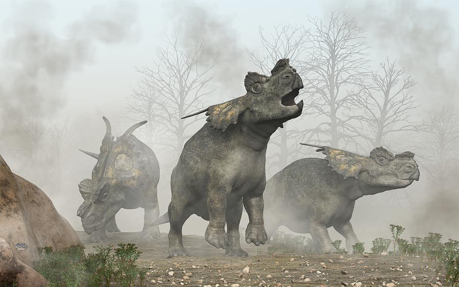 Achelousauruses Photograph