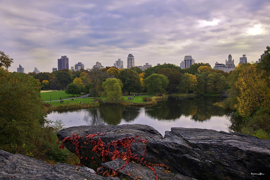 Across The Pond 2 - Central Park - Nyc Photograph