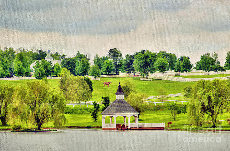 Across The Pond Photograph  - Across The Pond Fine Art Print