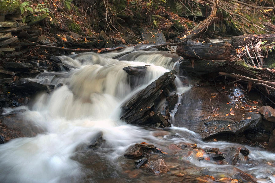 Active Offshoot Of Conestoga Falls Photograph  - Active Offshoot Of Conestoga Falls Fine Art Print