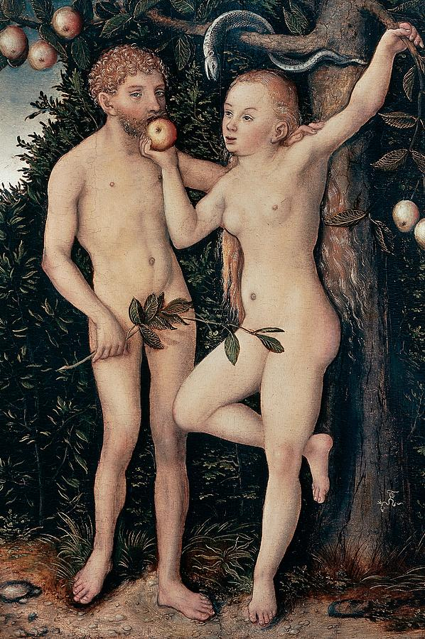 Painting Painting - Adam And Eve by Lucas Cranach Elder