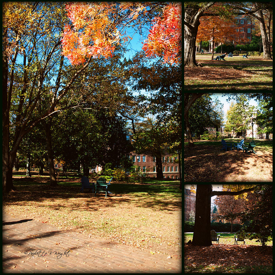 Adirondack Chairs Collage2 Photograph  - Adirondack Chairs Collage2 Fine Art Print