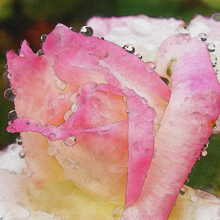 Admiration Of You Watercolor Photograph  - Admiration Of You Watercolor Fine Art Print