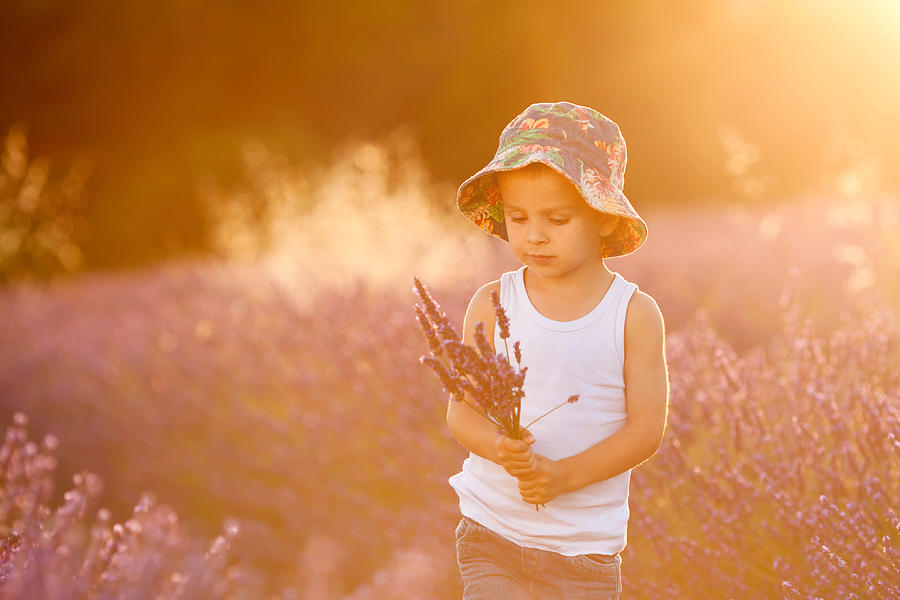 Adorable Cute Boy With A Hat In A Lavender Field Photograph