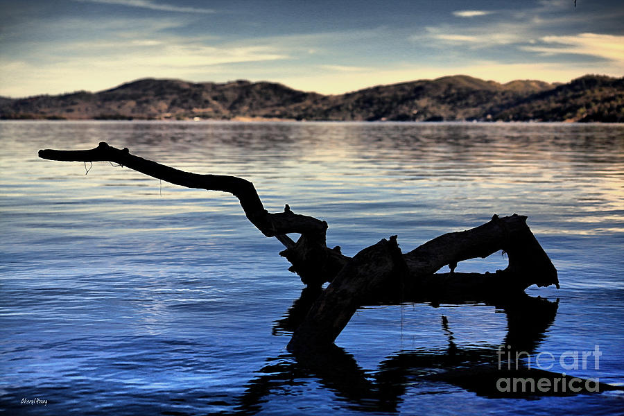 Adrift Reflection Photograph  - Adrift Reflection Fine Art Print