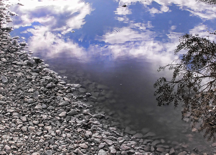 Puddle Photograph - After The Rain by Kristie  Bonnewell