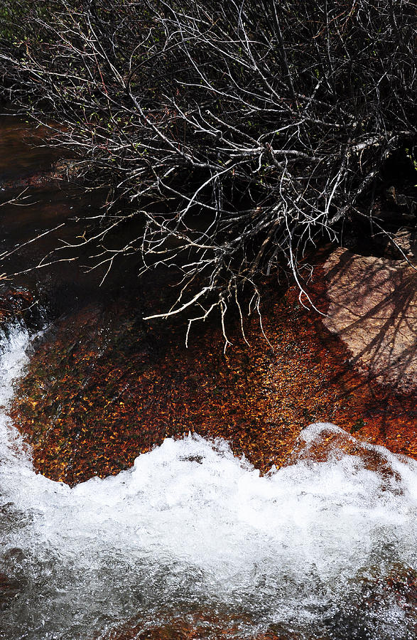Stream Photograph - After The Thaw by The Forests Edge Photography - Diane Sandoval