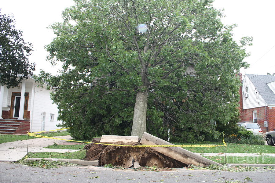 Aftermath Of Hurricane Irene Photograph
