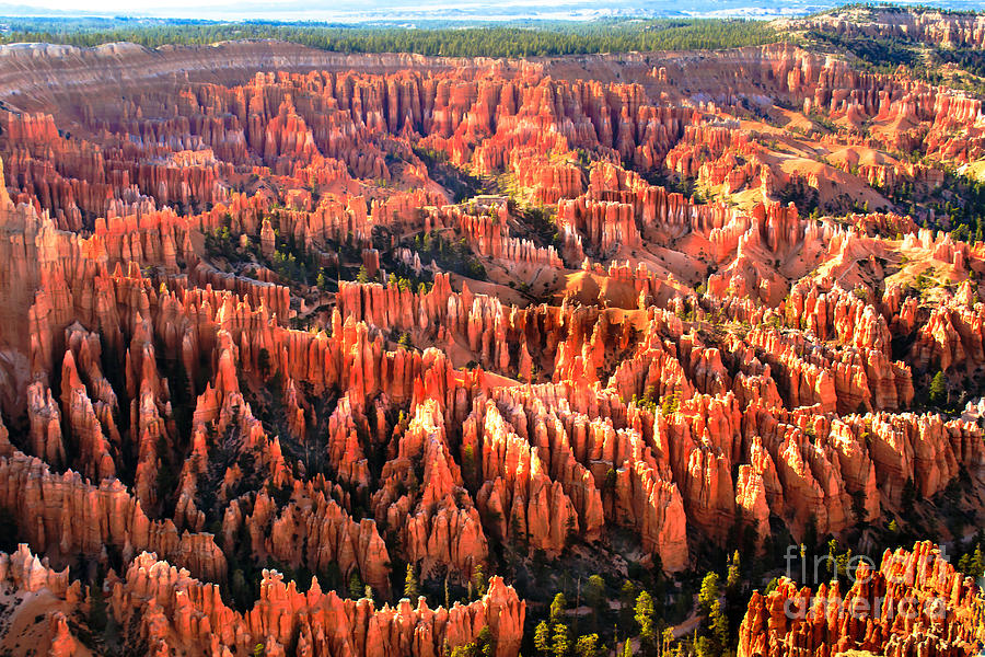 Bryce Canyon Photograph - Afternoon Hoodoos by Robert Bales