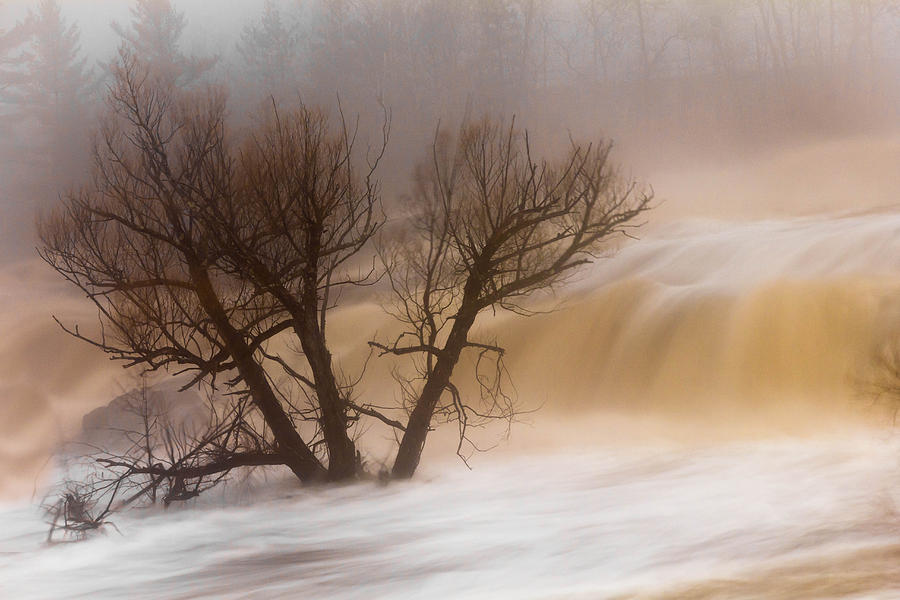 against The Current st. Louis River jay Cooke thomsen Reservoir spring Tree long Exposure spring Melt fog mist nature river mary Amerman Photograph - Against The Current by Mary Amerman